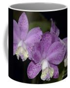 Cattleya Loddigesii 3877 Coffee Mug