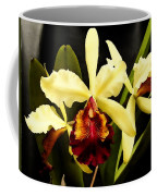 Cattleya Too Coffee Mug