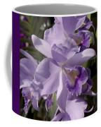Cattlianthe Portia  'waldor' Coffee Mug
