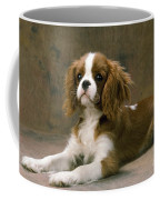 Cavalier King Charles Spaniel Dog Lying Coffee Mug