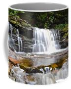 Cayuga Falls Coffee Mug