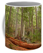 Cedar Logs At Garibaldi Coffee Mug