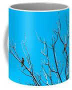 Cedar Wax Wings Coffee Mug