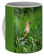 Cedar Waxwing 4 Coffee Mug