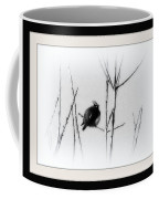Cedar Waxwing - Black And White  Coffee Mug