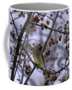 Cedar Waxwing Eating Berries 11 Coffee Mug