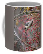 Cedar Waxwing Feeding Coffee Mug