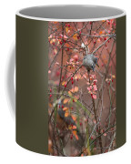 Cedar Waxwing Foraging Coffee Mug
