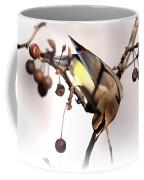 Cedar Waxwing - Img_9835-7x5 Coffee Mug