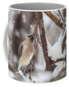 Cedar Waxwing In Winter Coffee Mug
