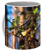 Cedar Waxwing Preparing To Fly Coffee Mug