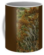 Cedars In The Fall Coffee Mug