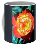 Celebration Rose Palm Springs Coffee Mug