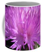 Centaurea From The Sweet Sultan Mix Coffee Mug