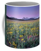Central Idaho Color Coffee Mug