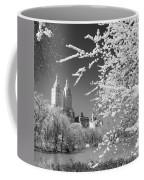 Central Park - Nyc Coffee Mug