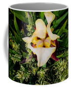 Centrepiece  Coffee Mug
