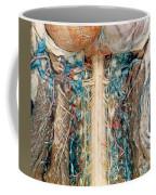 Cervical Spinal Cord, Posterior View Coffee Mug