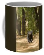 Chance Encounter With The Hairy One Coffee Mug