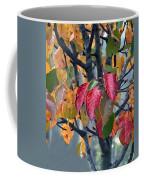 Changing Colors Coffee Mug