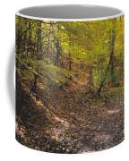 Changing Seasons Coffee Mug