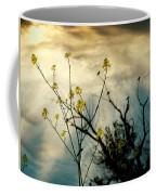 Changing Sky Coffee Mug