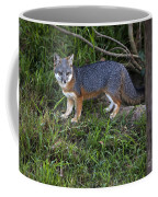 Channel Island Fox Coffee Mug