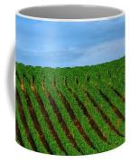 Chardonnay Sky 17990 Coffee Mug