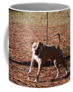 Charging Pitbull Coffee Mug