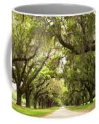 Charleston Avenue Of Oaks Coffee Mug