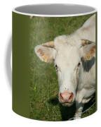 Charolais Cow Coffee Mug