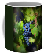 Chateauneuf Du Pape Hidden Treasure Coffee Mug