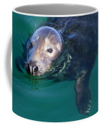 Chatham Harbor Seal Coffee Mug