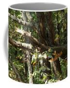 Chattahoochee River Trails Coffee Mug