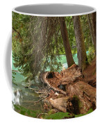Cheakamus Lake Rainforest - British Columbia Coffee Mug