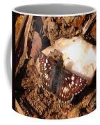 Checkered Skipper Coffee Mug