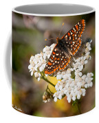 Checkerspot Butterfly On A Yarrow Blossom Coffee Mug