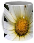 Cheery Daisy  Coffee Mug