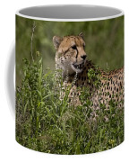 Cheetah   #0089 Coffee Mug
