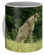 Cheetah-79 Coffee Mug