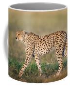 Cheetah Acinonyx Jubatus Walking Coffee Mug