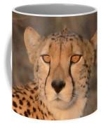 Cheetah Gaze At Sunset Coffee Mug