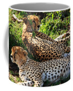 Cheetah - Masai Mara - Kenya Coffee Mug