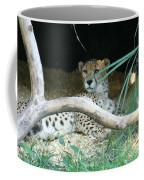 Cheetah Resting  Coffee Mug
