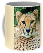 Cheetah Stare L Coffee Mug