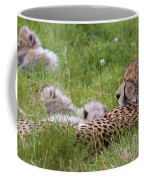 Cheetah With Cubs Coffee Mug