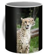 Cheetah's 05 Coffee Mug