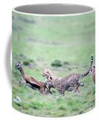 Cheetahs Acinonyx Jubatus Chasing Coffee Mug