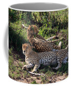 Cheetahs Of The Masai Mara Coffee Mug
