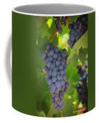 Chelan Blue Grapes Coffee Mug